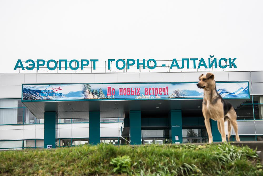 Altay-krasavia-l410-40