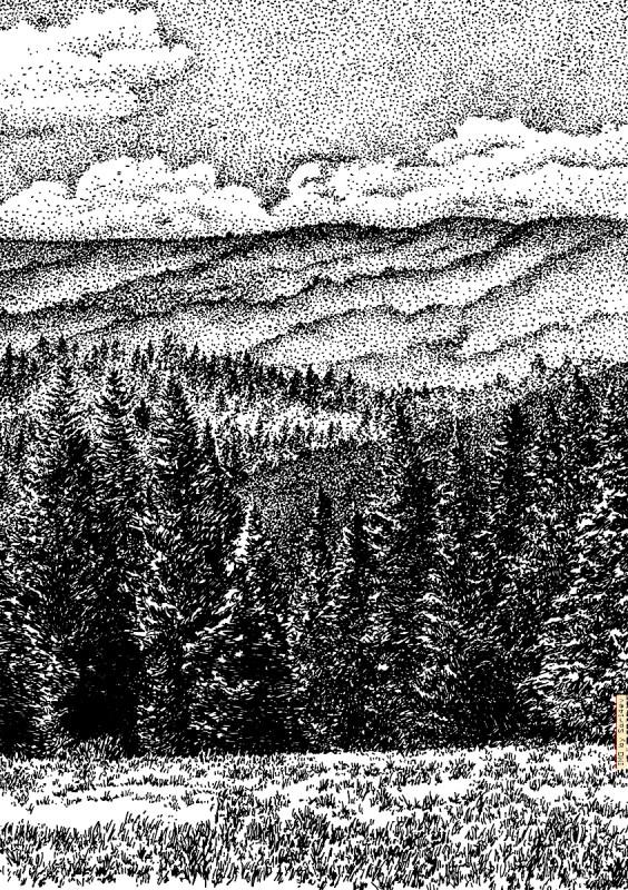 Altai 042