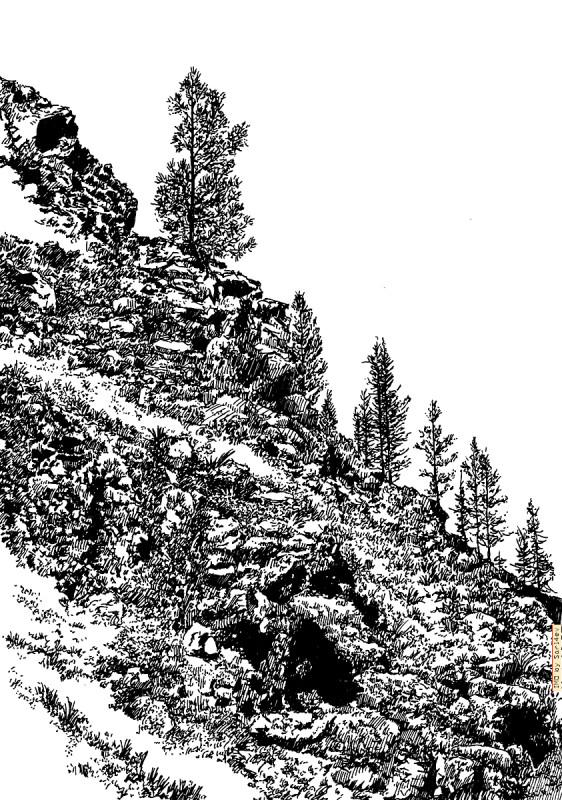 Altai 045