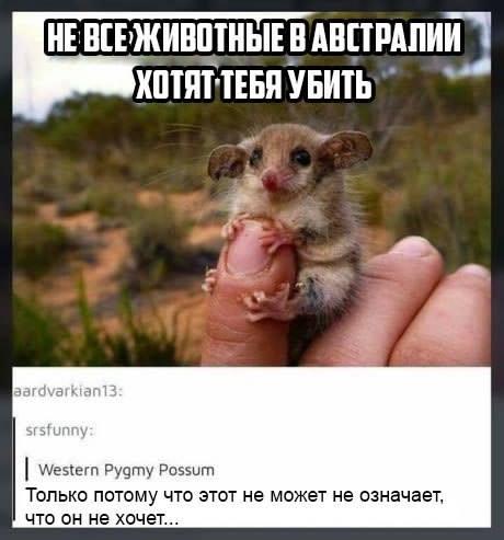 1276515_original.jpg