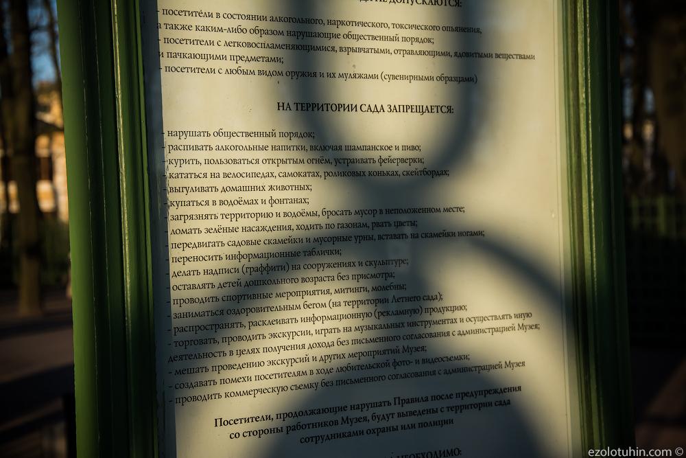 Запретили заниматься оздоровительным бегом. Ужасы в центре Петербурга