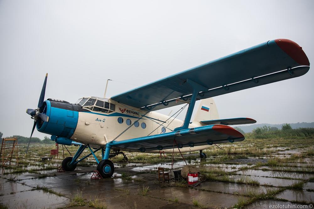 Коллекция Ан-2 в аэропорту Ачинска сельскохозяйственных, более, задач, аэропорт, можно, Ачинска, города, около, увидеть, тысяч, Сегодня, несколько, авиации, активно, самолеты, используемые, научно, Сибирского, изредка, данным