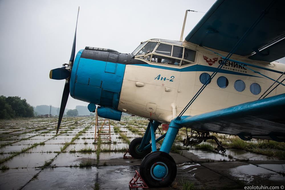 Коллекция Ан-2 в аэропорту Ачинска