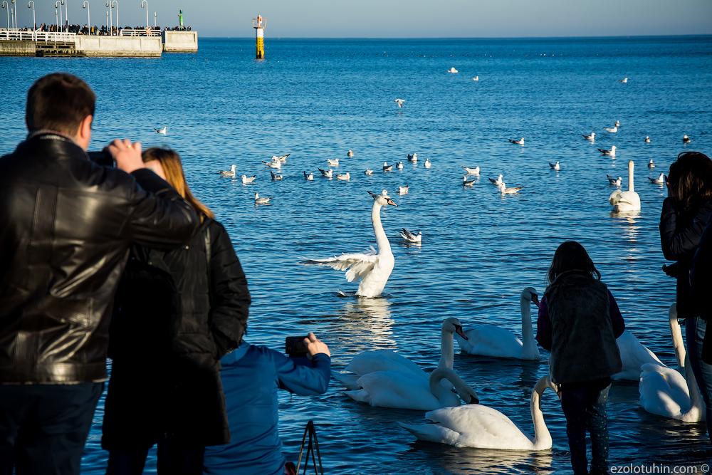 Очень жаркий февральский день на польском курорте у Балтийского моря. Это просто праздник какой-то!