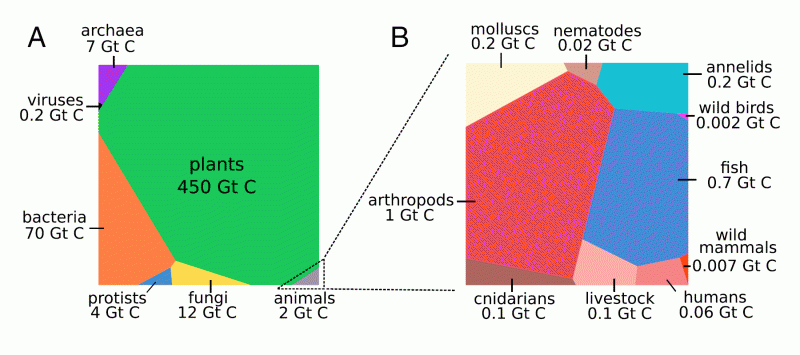 The biomass distribution on Earth. Figure 1 (picture only)