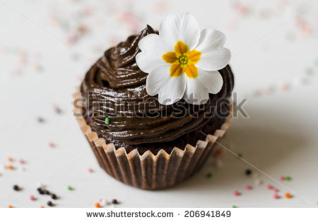 stock-photo-muffin-206941849