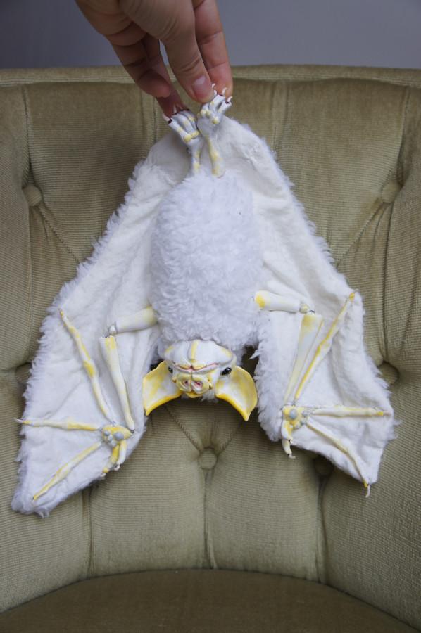 Honduran White Bat Eva Pro