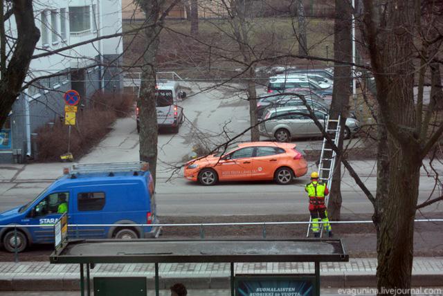 Chistka skvorechnika v Helsinki