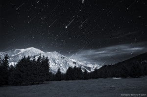 3 Екатерина Васягина - Ночная съемка.jpg