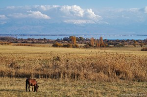 8 Екатерина Васягина - Восточный берег Иссык-Куль 3.jpg