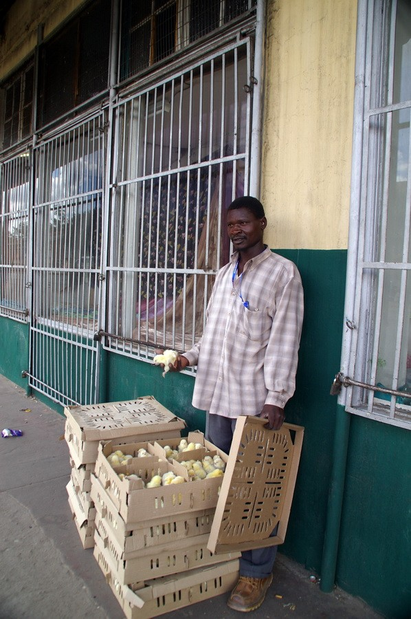 Продавец цыплят