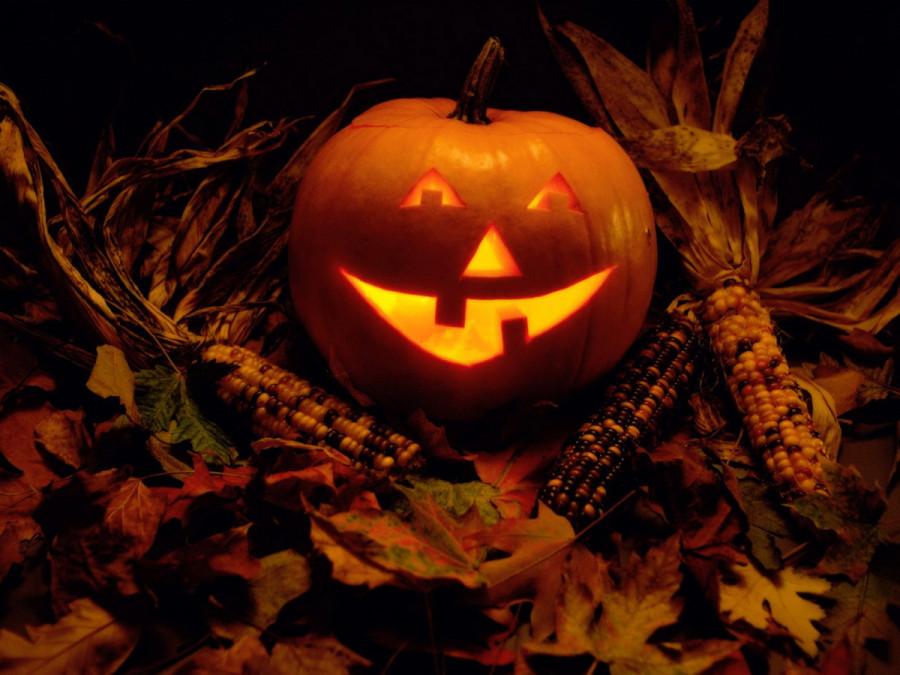halloween-pumpkin-003