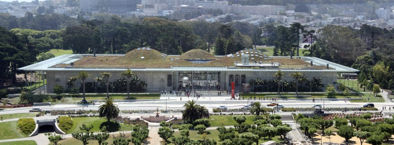 California_Academy_of_Sciences_вид сбоку.jpg