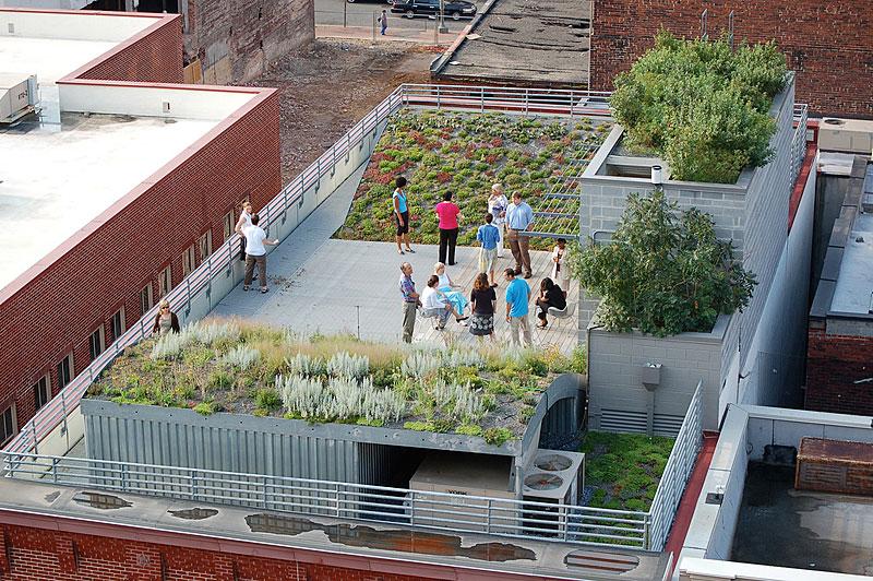 ASLA green roof.jpg