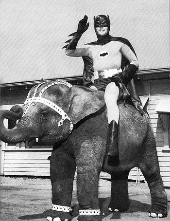 Batman on elephant