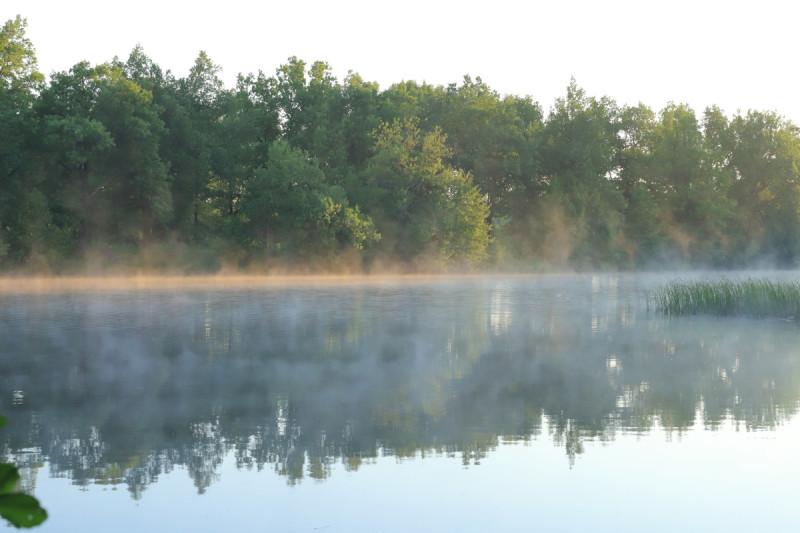 Рассветный туман. Фото Владимира Урбановича