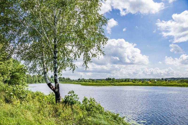 Вятская земля. Фото Елены Чудиновских