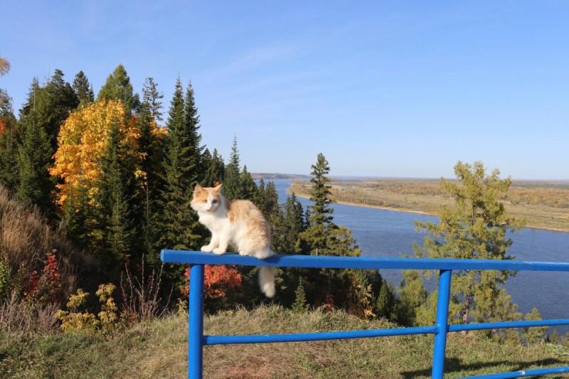 На берегу Камы, фото Павла Бутакова