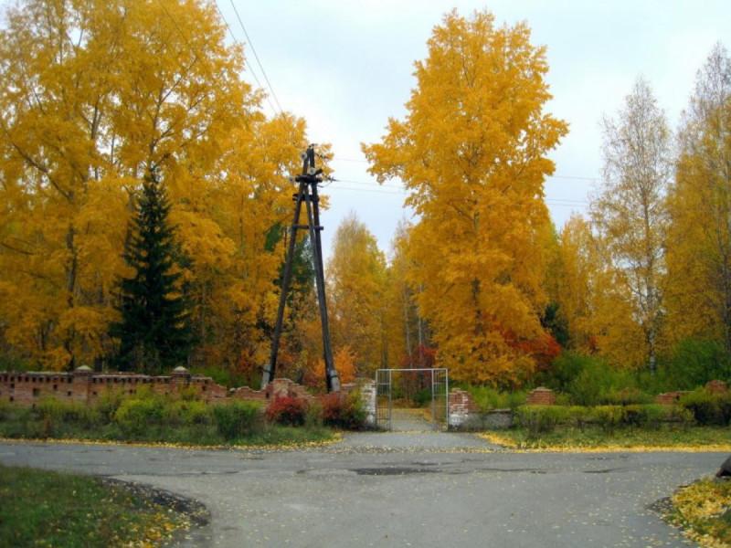 Вход в городской парк со стороны ул. Кольцевой.