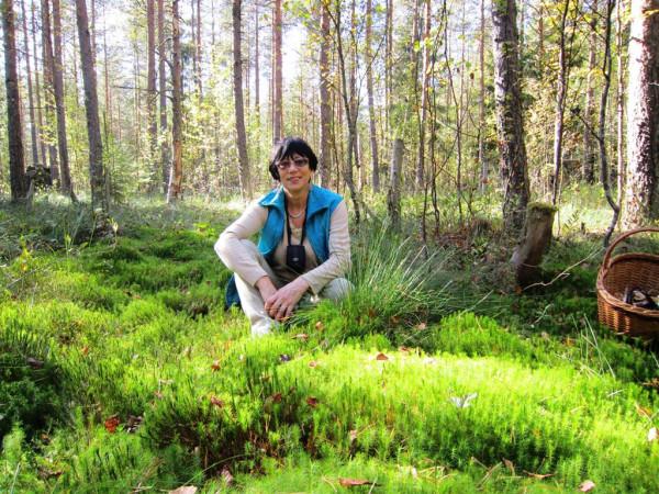 Лес у Садов