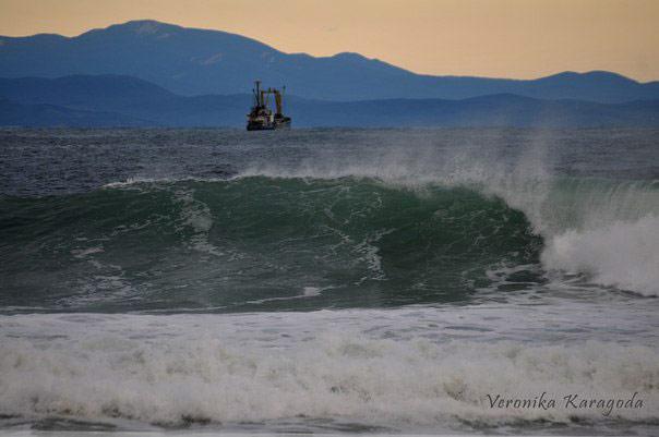 patrokl_surfing