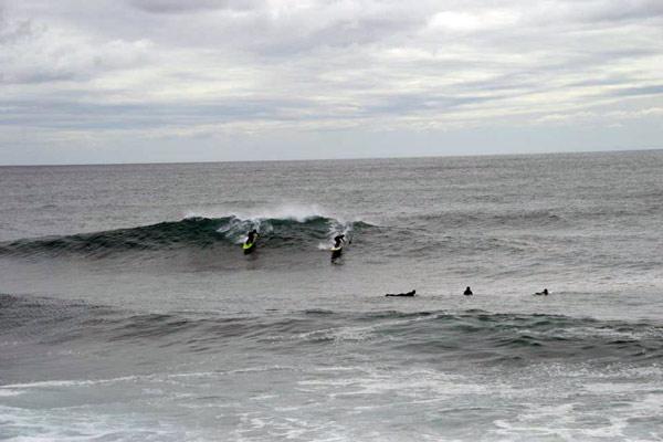 reyneke_surfing