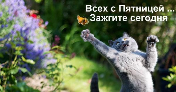 Misha_pixanews-PRW.jpg