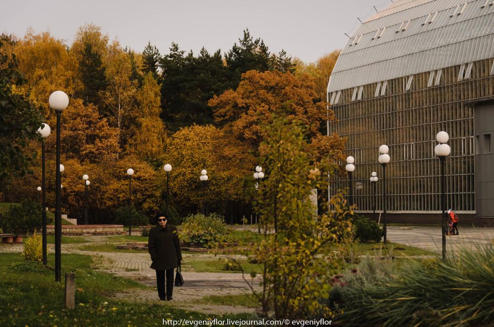 Золотая Осень В Ботаническом саду им Цецина  17  10 - 2017  ! (20 of 35).jpg