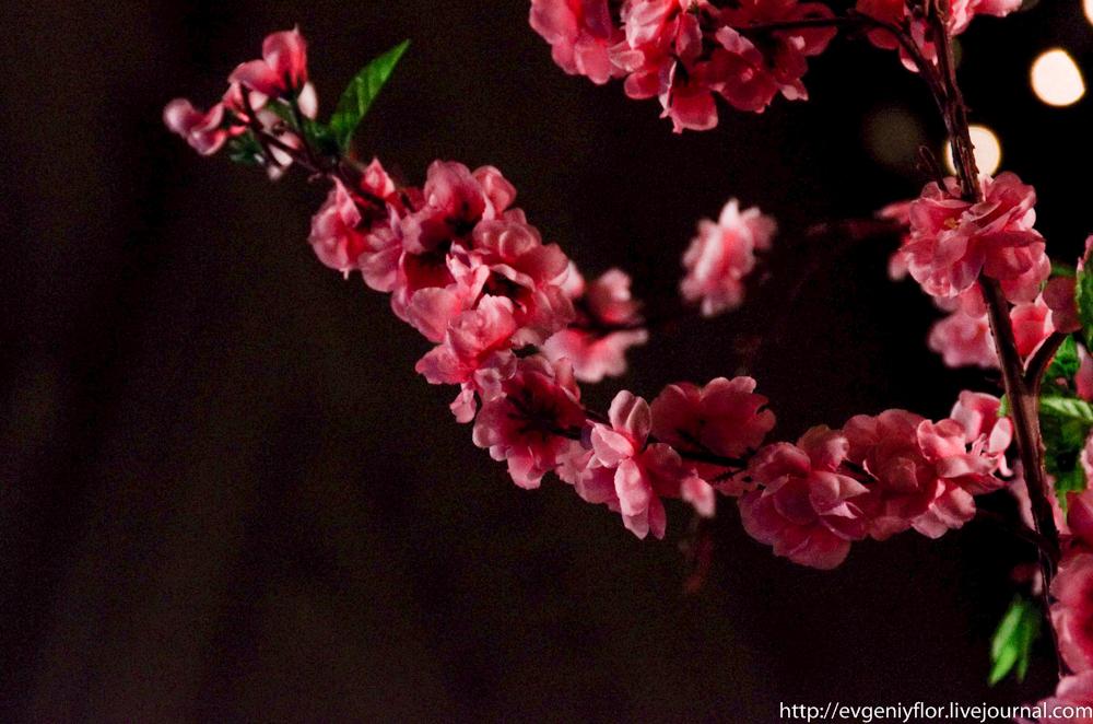 Цветы из разных мест  (3 of 19).jpg