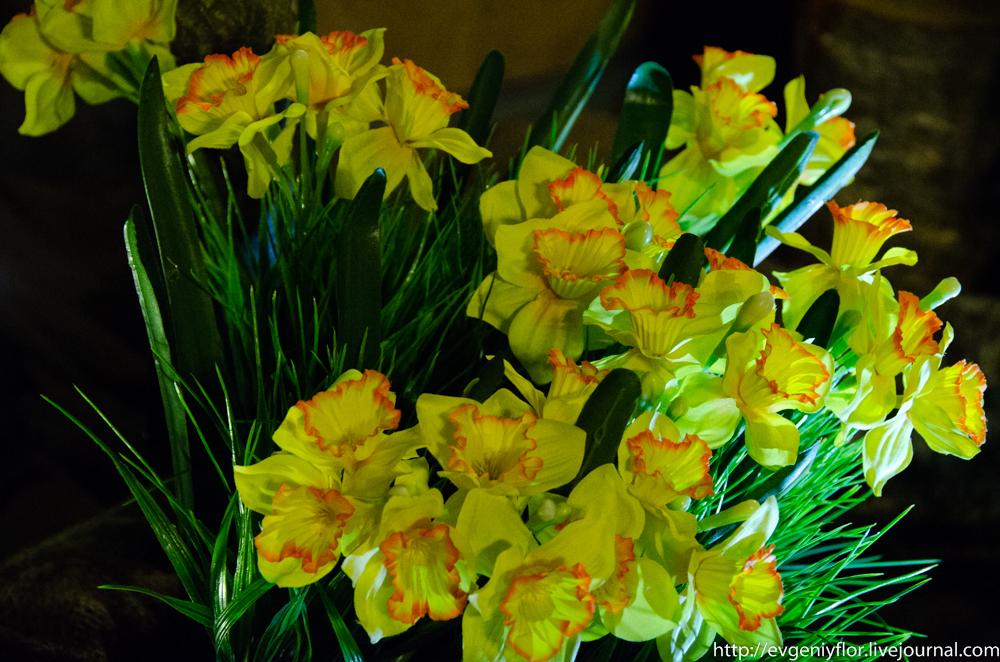 Цветы из разных мест  (13 of 19).jpg