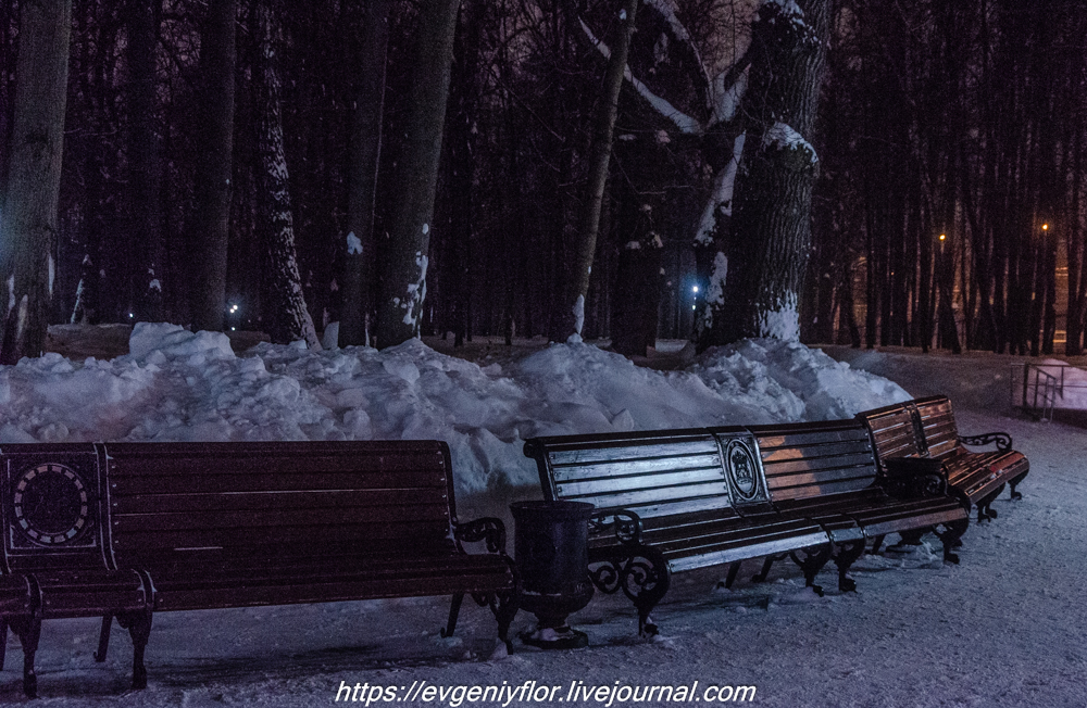 Прогулка по парку -- Отрада  --   29 - 1 - 2019 год Вторник ! (2 of 60).JPG