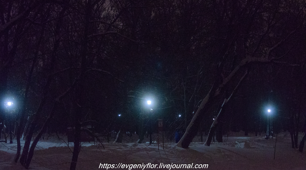 Прогулка по парку -- Отрада  --   29 - 1 - 2019 год Вторник ! (11 of 60).JPG