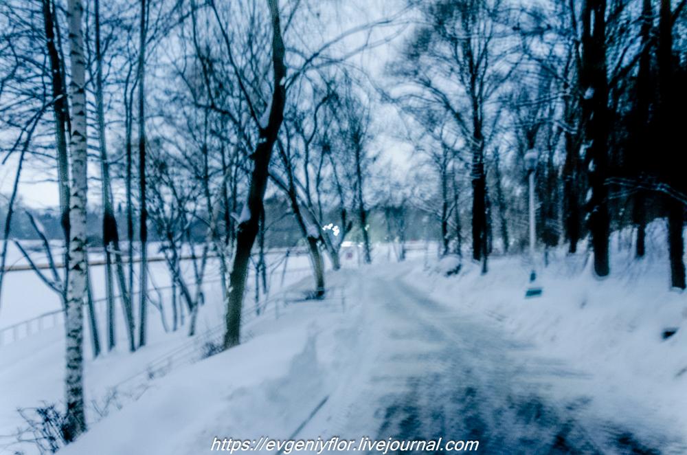 Прогулка по парку -- Отрада  --   29 - 1 - 2019 год Вторник ! (14 of 60).JPG