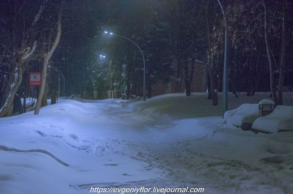 Прогулка по парку -- Отрада  --   29 - 1 - 2019 год Вторник ! (18 of 60).JPG