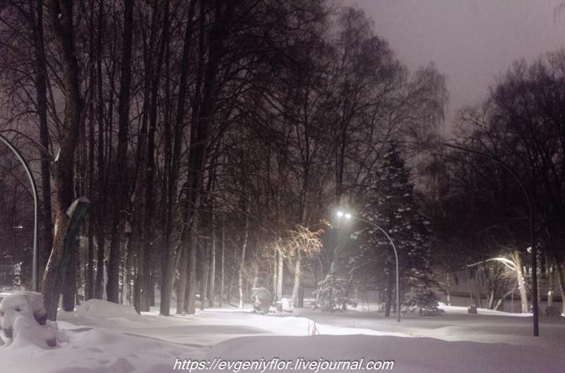 Прогулка по парку -- Отрада  --   29 - 1 - 2019 год Вторник ! (25 of 60).JPG