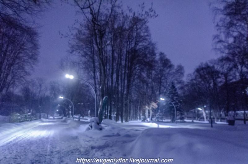 Прогулка по парку -- Отрада  --   29 - 1 - 2019 год Вторник ! (26 of 60).JPG