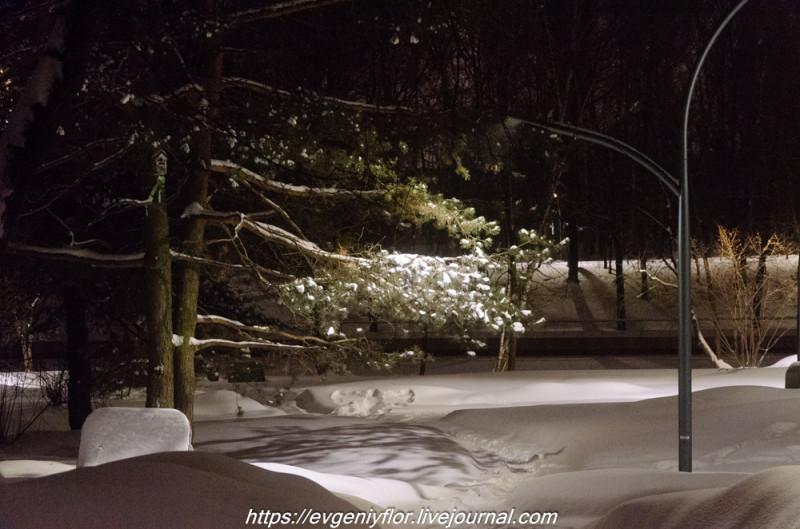 Прогулка по парку -- Отрада  --   29 - 1 - 2019 год Вторник ! (27 of 60).JPG