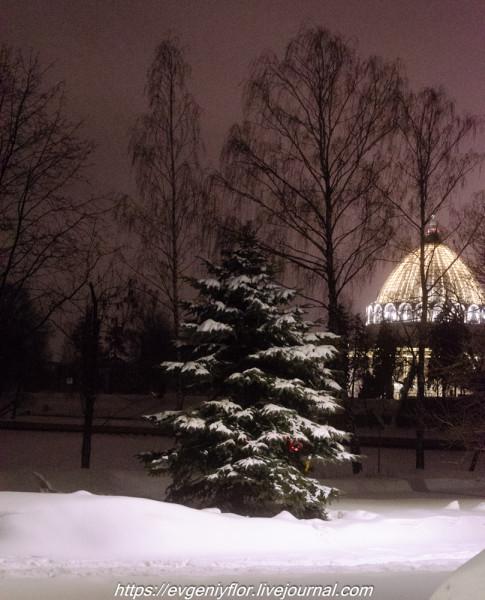 Прогулка по парку -- Отрада  --   29 - 1 - 2019 год Вторник ! (28 of 60).JPG