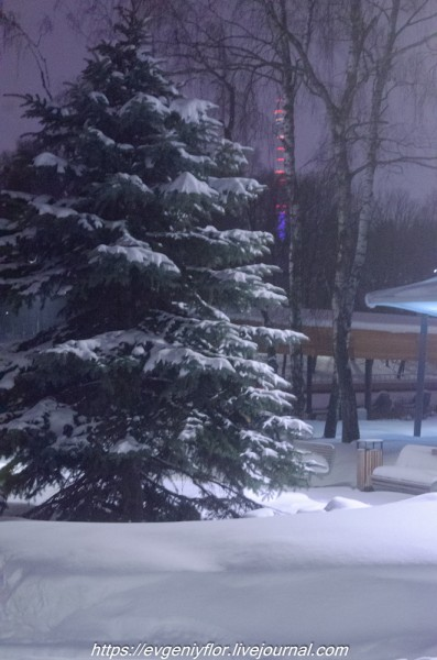 Прогулка по парку -- Отрада  --   29 - 1 - 2019 год Вторник ! (29 of 60).JPG