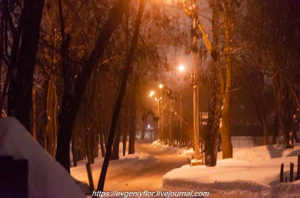 Прогулка по парку -- Отрада  --   29 - 1 - 2019 год Вторник ! (37 of 60).JPG