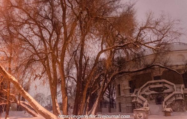 Прогулка по парку -- Отрада  --   29 - 1 - 2019 год Вторник ! (45 of 60).JPG