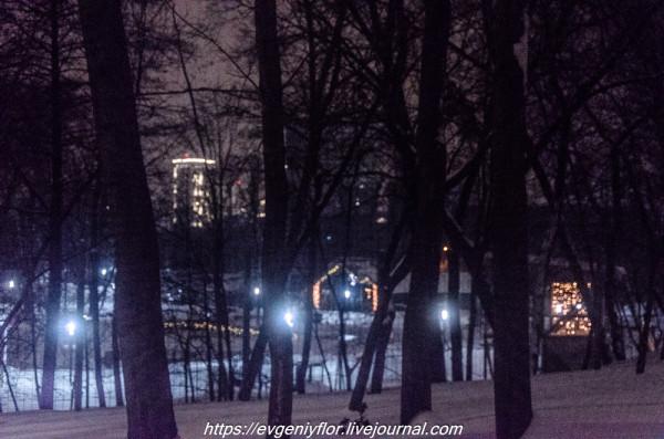 Прогулка по парку -- Отрада  --   29 - 1 - 2019 год Вторник ! (48 of 60).JPG