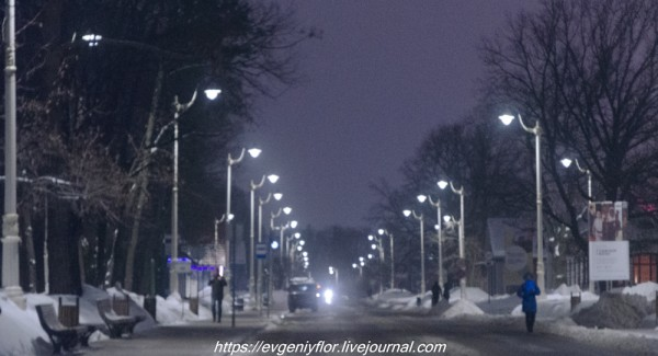 Прогулка по парку -- Отрада  --   29 - 1 - 2019 год Вторник ! (53 of 60).JPG