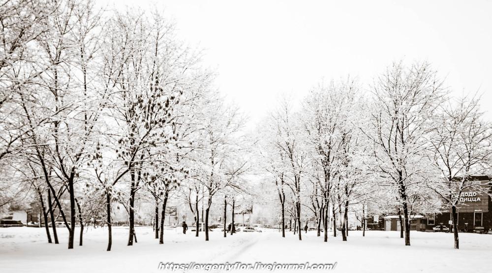 冬のLikhoborkaまたは黄河Altufana 13 02 - 2019 Среда !...2019-02-136481.jpg