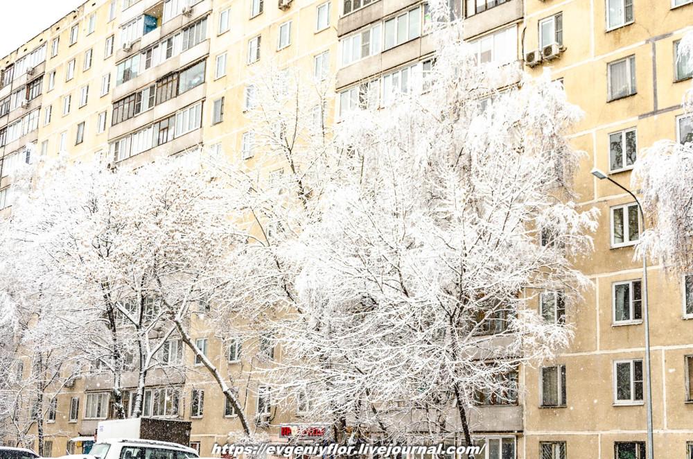 冬のLikhoborkaまたは黄河Altufana 13 02 - 2019 Среда !...2019-02-136485.jpg