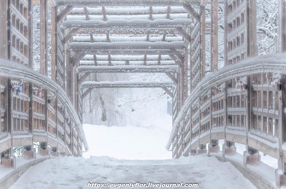 冬のLikhoborkaまたは黄河Altufana 13 02 - 2019 Среда !...2019-02-136493.jpg