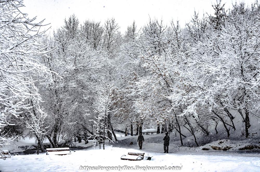 冬のLikhoborkaまたは黄河Altufana 13 02 - 2019 Среда !...2019-02-136502.jpg