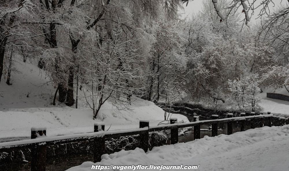 冬のLikhoborkaまたは黄河Altufana 13 02 - 2019 Среда !...2019-02-136508.jpg