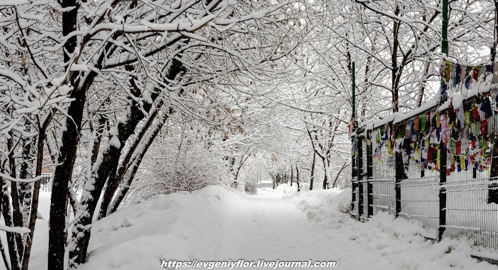 冬のLikhoborkaまたは黄河Altufana 13 02 - 2019 Среда !...2019-02-136514.jpg