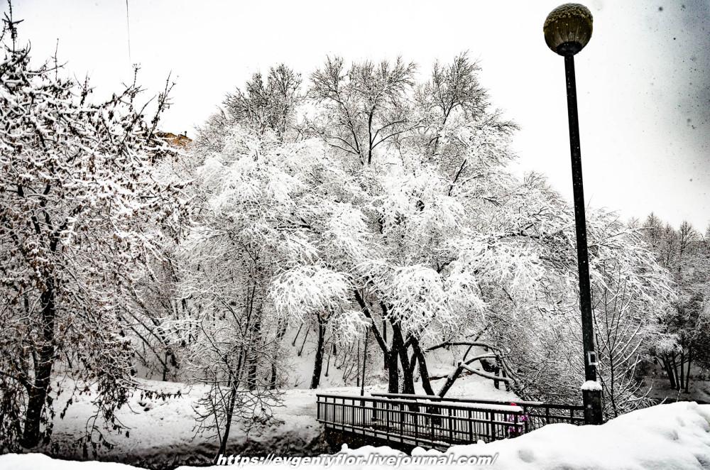 冬のLikhoborkaまたは黄河Altufana 13 02 - 2019 Среда !...2019-02-136522.jpg